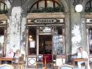 ونیز 2011_14